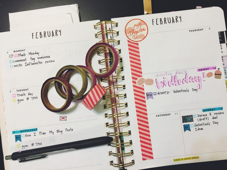 February 2017 Plan with Me // Week 2