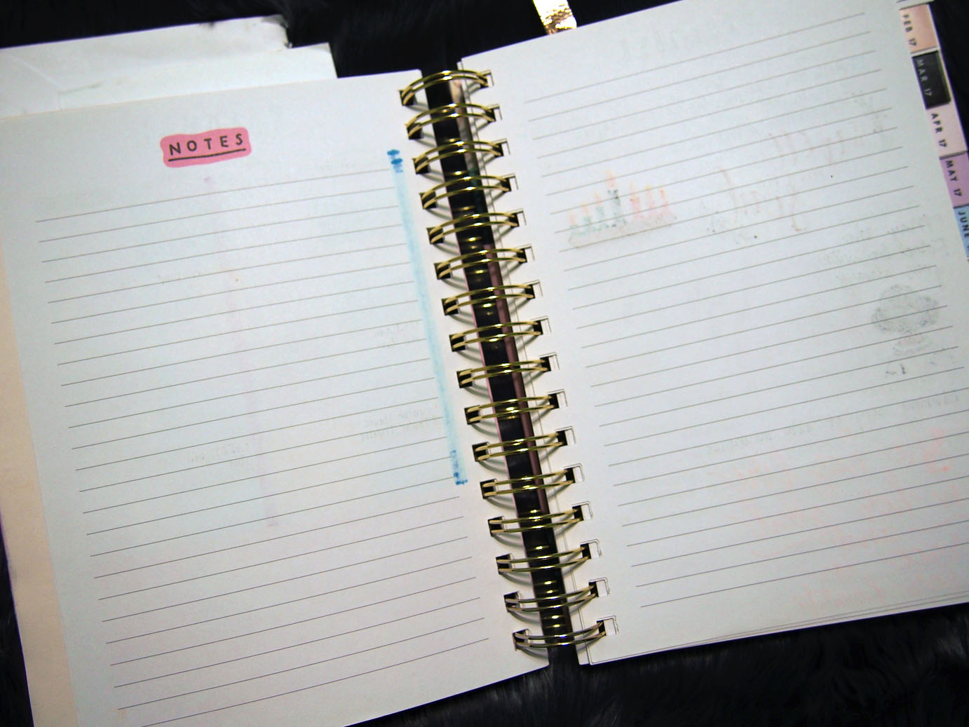 January 2017 Plan With Me // Notes Pages