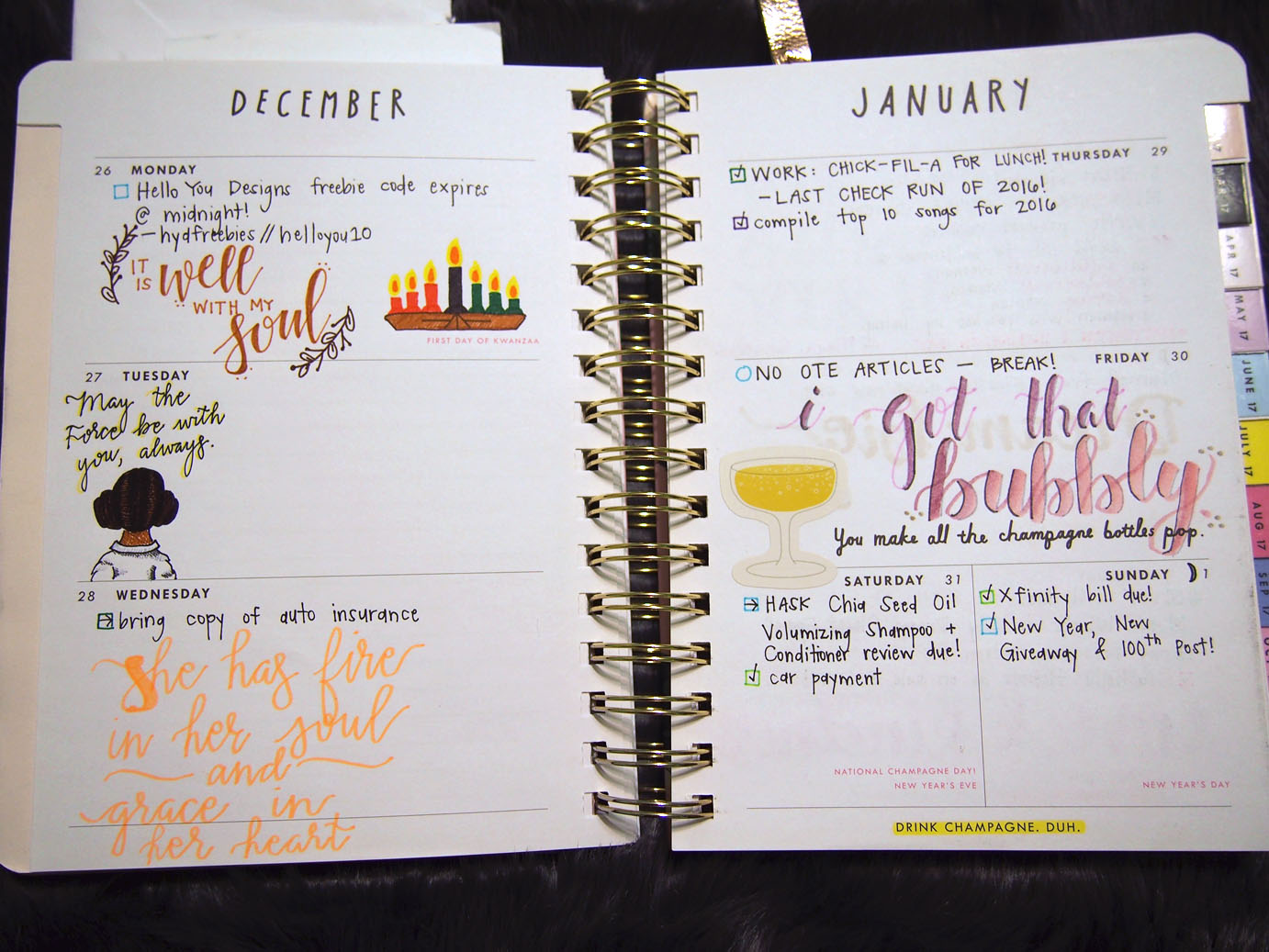 January 2017 Plan With Me // Week 1