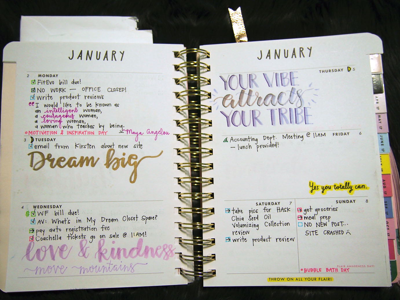 January 2017 Plan With Me // Week 2
