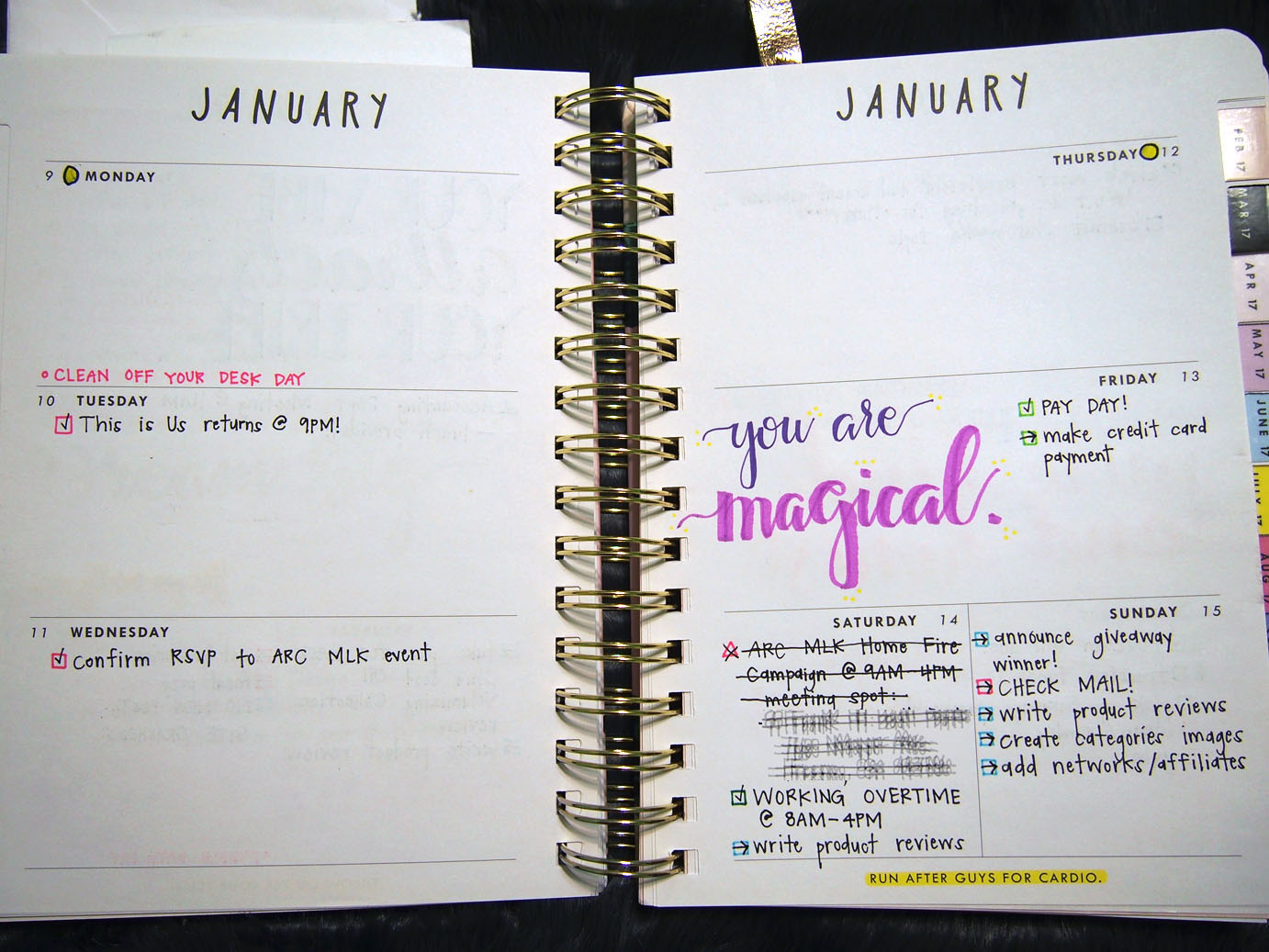 January 2017 Plan With Me // Week 3
