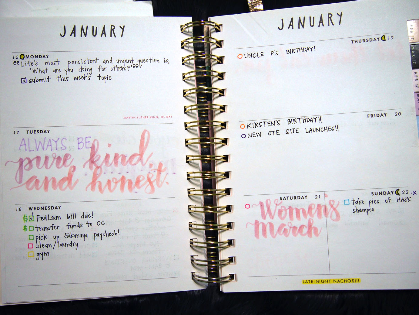 January 2017 Plan With Me // Week 4