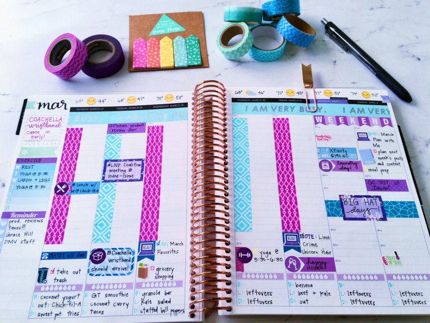 March 2017 Plan With Me // Week 5